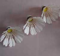 plusballs shuttles feather